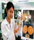 Giáo trình: Công nghệ nuôi cấy mô tế bào thực vât