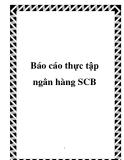 Báo cáo thực tập ngân hàng SCB