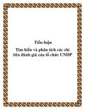 """Đề tài """"Tìm hiểu và phân tích các chỉ tiêu đánh giá của tổ chức UNDP"""""""