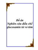 Đồ án: Nghiên cứu điều chế glucosamin từ vỏ tôm