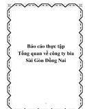 """Báo cáo thực tập """" tổng quan về công ty bia Sài Gòn Đồng Nai"""""""