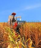 Kinh doanh nông nghiệp - Chương 3: Kỹ năng xây dựng các dự án kinh doanh trong nông nghiệp