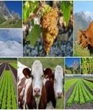 Kinh doanh nông nghiệp - Chương 1: Tổ chức tiêu thu sản phẩm trong kinh doanh nông nghiệp