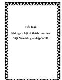 Tiểu luận:  Những cơ hội va thách thức của Việt Nam khi gia nhập WTO