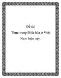 Bài tiểu luận: Thực trạng Đôla hóa ở Việt Nam hiện nay