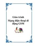 Giới thiệu về mạng điện thoại di động GSM