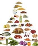 Bổ sung chế độ ăn uống