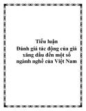 """Tiểu luận: """"Đánh giá tác động của giá xăng dầu đến một số ngành nghề của Việt Nam"""""""