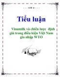 Tiểu luận: Vinamilk và chiến lược định giá trong điều kiện Việt Nam gia nhập WTO