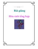 Bài giảng hóa sinh tổng hợp