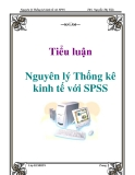 Tiểu luận: Nguyên lý Thống kê kinh tế với SPSS