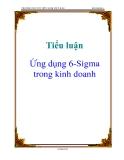 Tiểu luận: Ứng dụng 6-Sigma trong kinh doanh