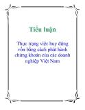 Tiểu luận: Thực trạng việc huy động vốn bằng cách phát hành chứng khoán của các doanh nghiệp Việt Nam