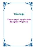 Tiểu luận: Thực trạng và nguyên nhân đói nghèo ở Việt Nam