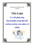 Tiểu luận: Cơ chế phản ứng Electrophin trong liên kết cacbon-cacbon của anken và ankin