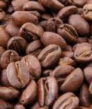 Cà phê hạt đinh hương