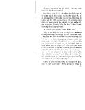 33 Câu hỏi đáp về trồng và chăm sóc cây ăn quả (cây chuối) part 3