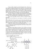 Giáo trình Vi sinh vật học công nghiệp part 7