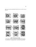 Giáo trình Hình thái giải phẩu học thực vật part 4