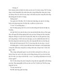 Chương 13 - Tình thần biến