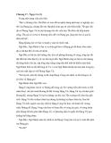 Chương 17 - Nguy Cơ (2)