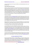 Hướng dẫn cách kiếm tiền trên Internet cùng John Chow  phần 8