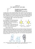 CÁC  RIBÔNUCLÊIC AXIT (ARN)