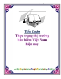 Đề tài: Thực trạng thị trường bảo hiểm Việt Nam hiện nay