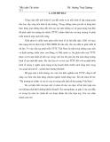 Tiểu luận: Thị trường tài chính và vai trò của nó trong nền kinh tế thị trường Việt Nam