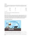 Tài liệu về Biogas