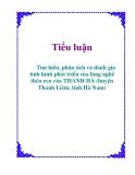 Tiểu luận: Tìm hiểu, phân tích và đánh giá tình hình phát triển của làng nghề thêu ren của THANH HÀ (huyện Thanh Liêm, tỉnh Hà Nam)