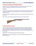 KỸ THUẬT QUÂN SỰ - Kiến thức về súng