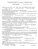 Đề thi thử hóa học - THPT Hương Hòa
