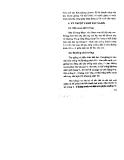Cây xa bô part 2