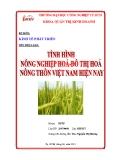 Tiểu luận: Tình hình nông nghiệp hóa - đô thị hóa nông thôn Việt Nam hiện nay