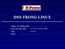 DNS Trong Linux