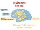Hoạt động cao cấp của hệ thần kinh