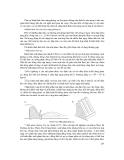 Quá trình hình thành giáo trình xây dựng đập chắn trong quy trình xây dựng đê tường chống lũ p6