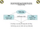 Quá trình hình thành quy trình phát triển mô hình cung cầu trong kinh doanh cân bằng và trạng thái không cân bằng p1