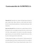 Gastroenteritis do SAMONELLASalmonella là gì?