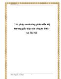 Giải pháp marketing phát triển thị trường giầy dép của công ty Biti's tại Hà Nội