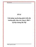 """Đề tài """"Giải pháp marketing phát triển thị trường giầy dép của công ty Biti's tại thị trường Hà Nội"""""""