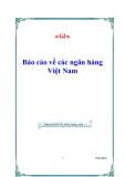 Báo cáo về các ngân hàng Việt Nam