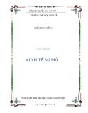 Giáo trình Kinh tế vi mô - Phí Mạnh Hồng