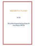 Đề tài: Giải pháp tăng cường huy động vốn của Công ty ARTEX