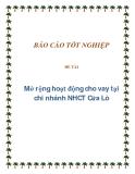 Mở rộng hoạt động cho vay tại chi nhánh NHCTCửa Lò