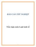 Tiểu luận môn Luật kinh tế