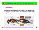 Bài giảng côn trùng : Đặc điểm giải phẫu côn trùng part 1