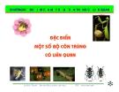 Bài giảng côn trùng : Đặc điểm của một số bộ côn trùng có liên quan