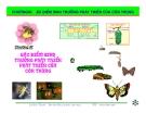 Bài giảng côn trùng : Đặc điểm sinh trưởng phát triển của côn trùng part 1